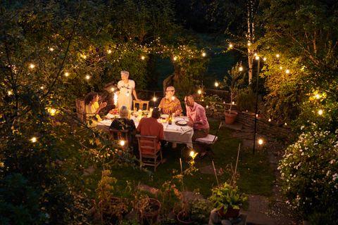 eliminar mosquitos jardin