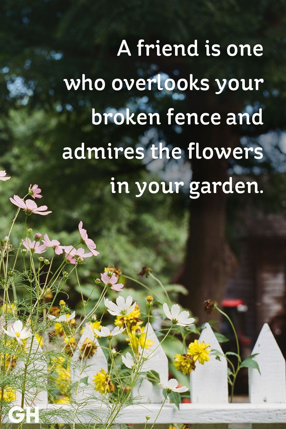friendship flowers in garden quote
