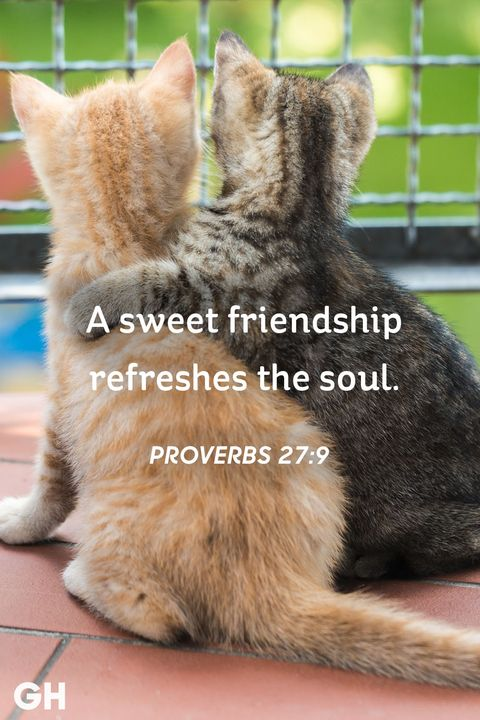 Quotes Friendship Adorable 48 Short Friendship Quotes For Best Friends Cute Sayings About Friends