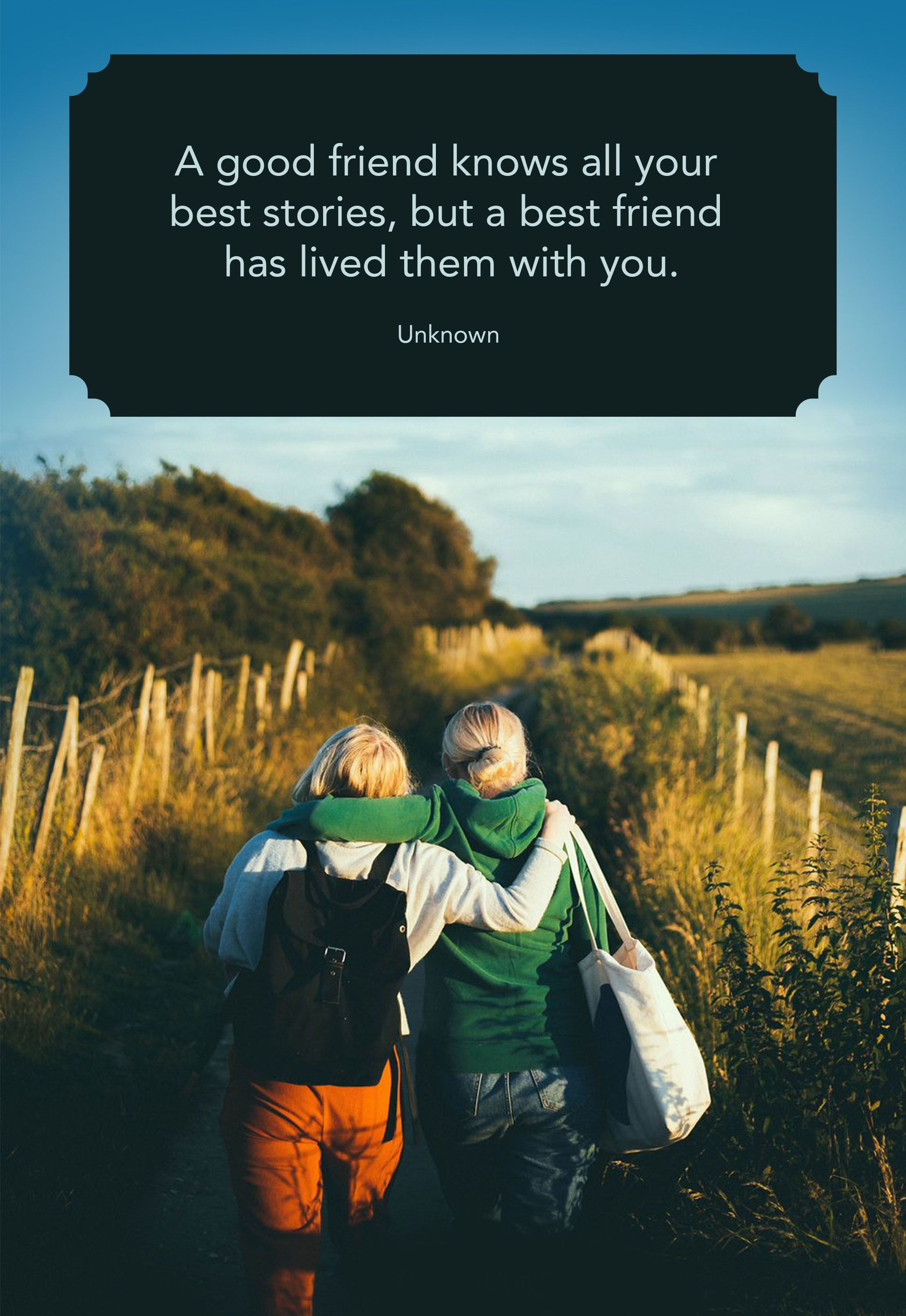 25 Cute Best Friend Quotes   Short Quotes About True Friends