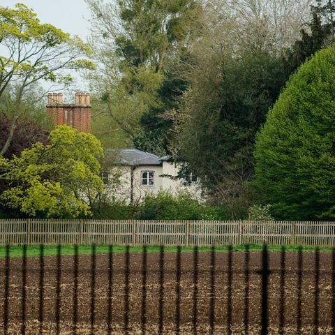 Frogmore Cottage garden