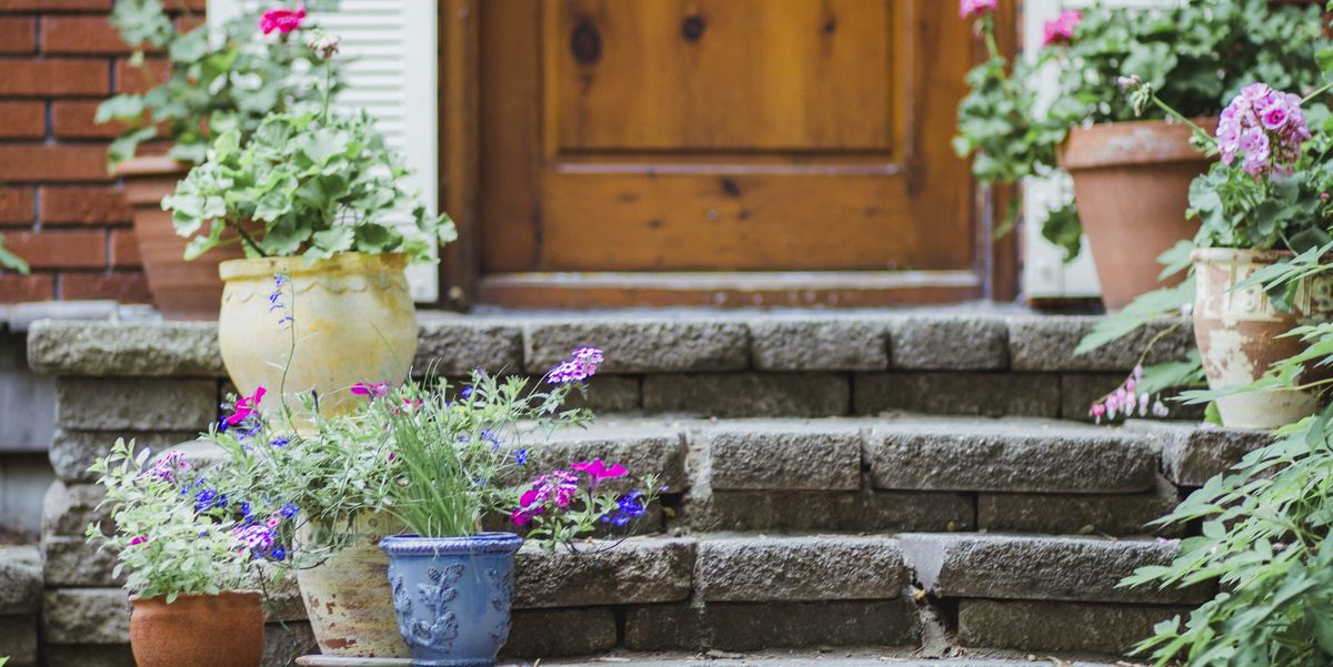 Front Door Plants to Beautify Your Home's Entrance