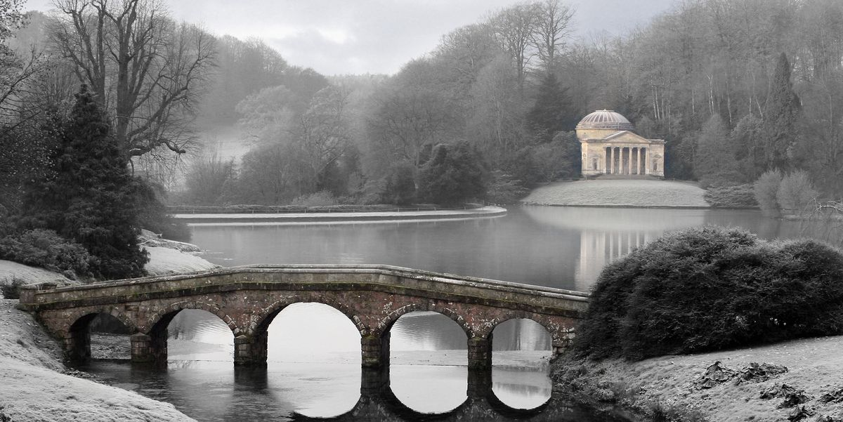Discover the Snowy Magic of These Eight Winter Gardens