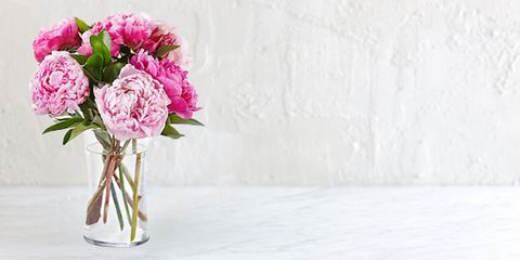 Ftd Mother S Day Flower
