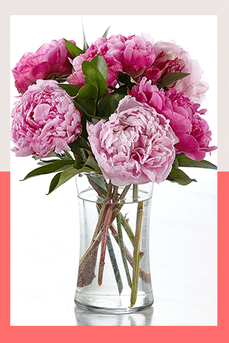 FTD Mother's Day Bouquet Sale - Peony Perfect Bouquet