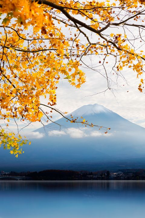 Fujisan in autumn