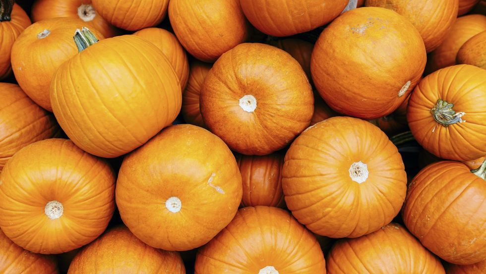 Turns Out Pumpkin Is Legit Really Good For You