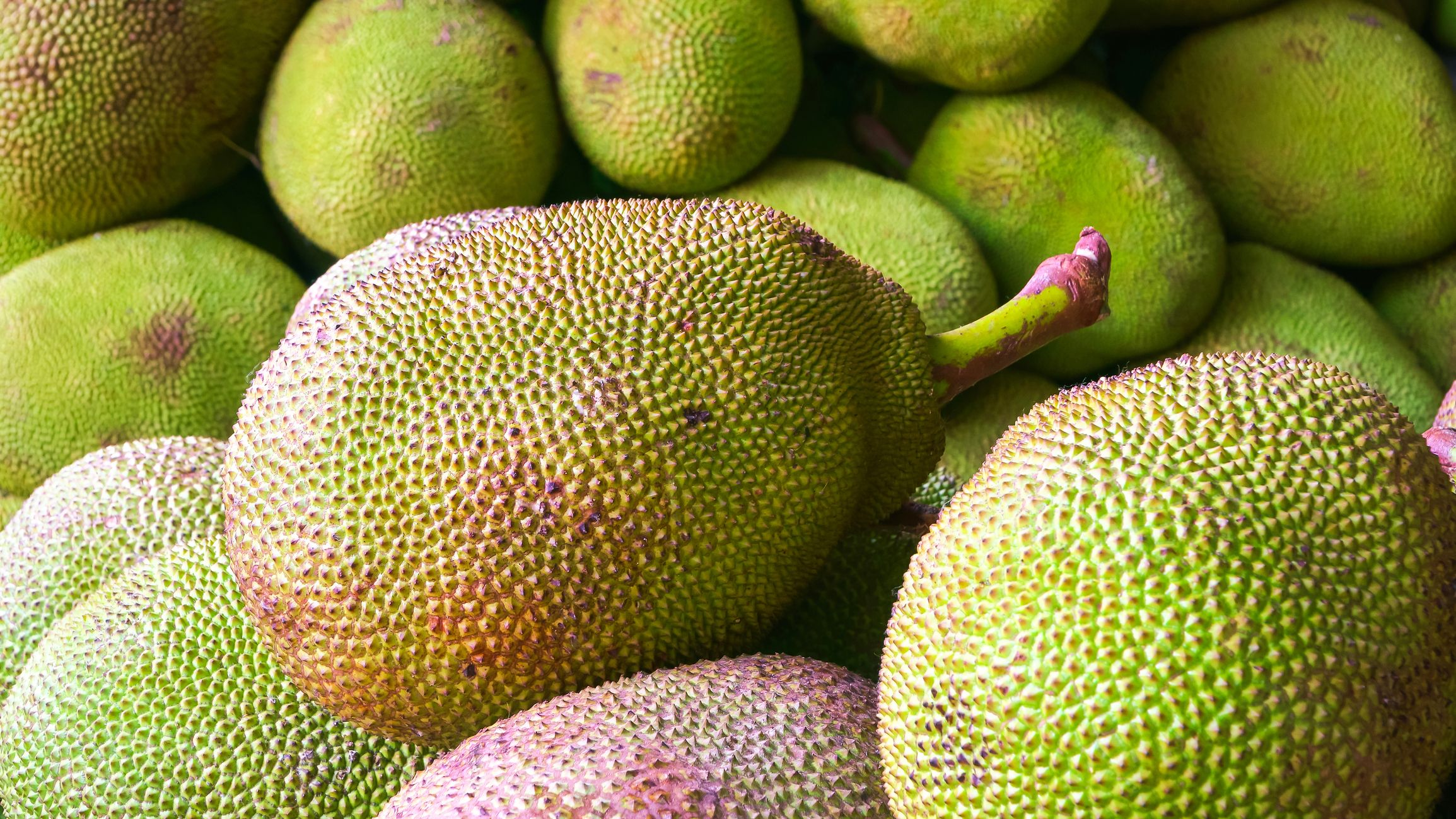 What is jackfruit and how to cook it