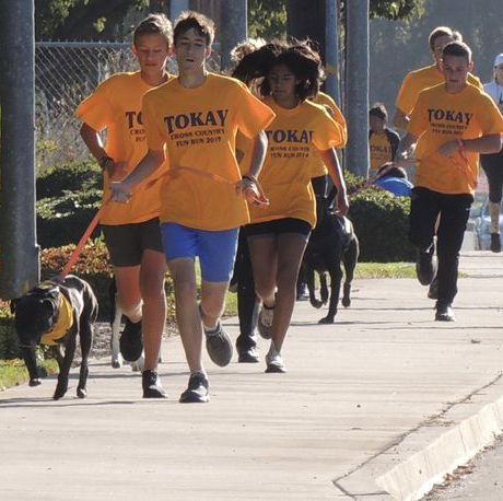 Recreation, Fun, Walking, Canidae, Jogging, Dog walking, Cani cross, Sports, Running, Sporting Group,