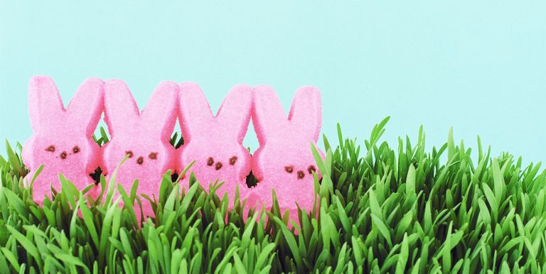 8 Funny Quotes About Easter