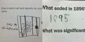 14 funny exam answers that are so wrong yet so right