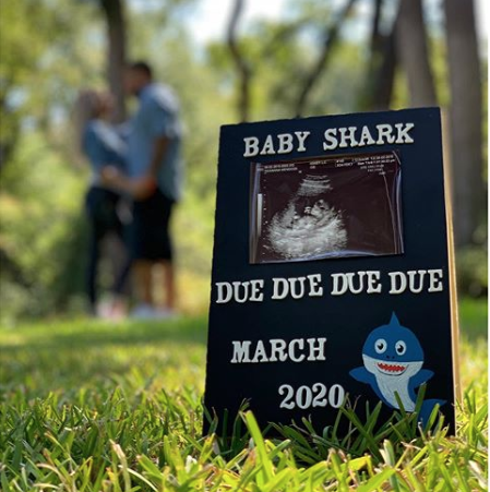 19 Funny Pregnancy Announcement Ideas: Pregnancy ...