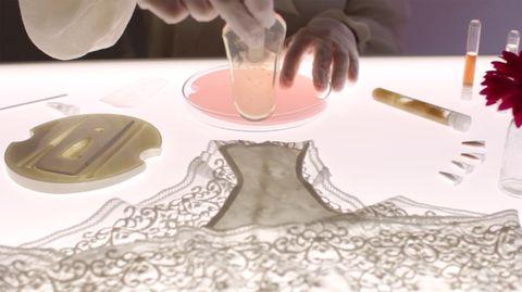 Placemat, Linens, Tablecloth, Table, Textile, Lace,