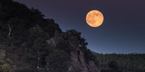 Moon, Sky, Full moon, Celestial event, Astronomical object, Light, Moonlight, Night, Biome, Atmosphere,