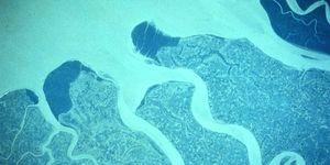 Ganges River Delta Bangladesh