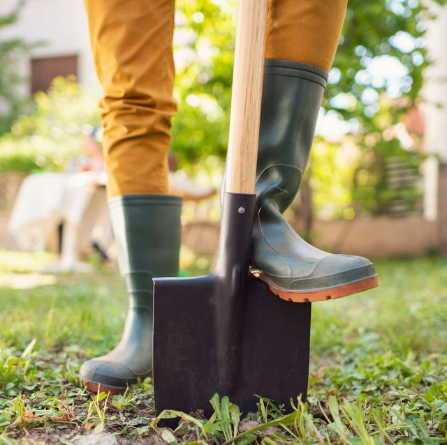 gardener standing on shovel in rubber boots