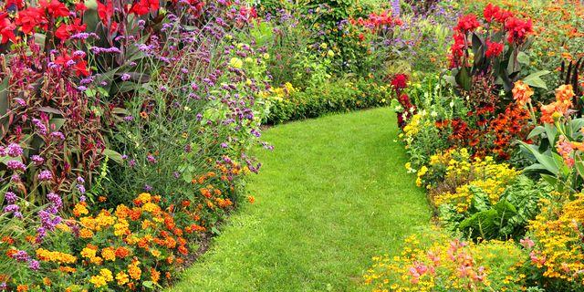 garden border ideas and design