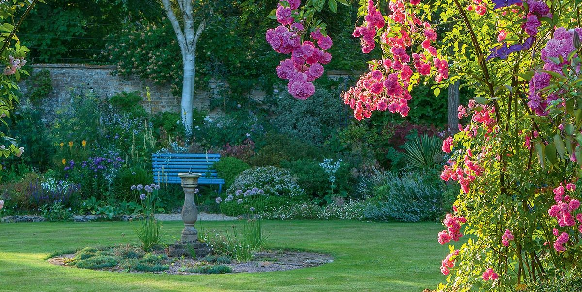 8 ways to create boundaries in your garden using borders and screens