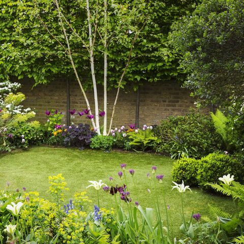how to design an accessible garden, according to the way of the gardeners' world