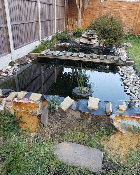 garden disasters