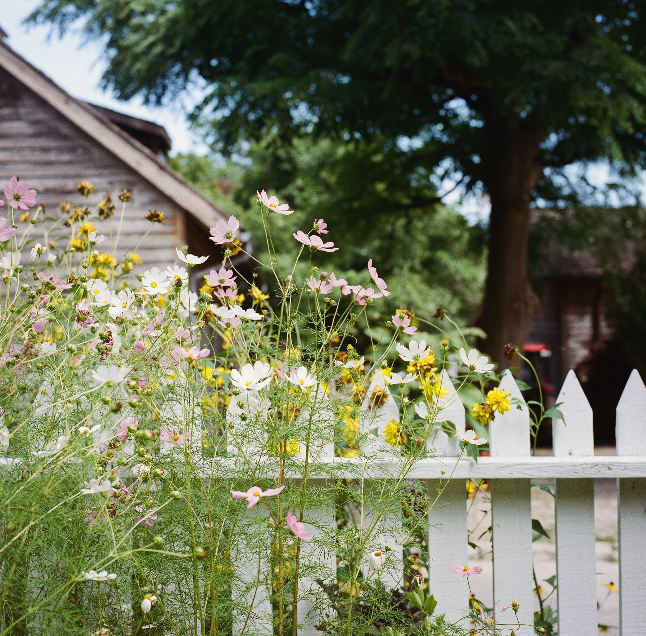 19 Practical And Pretty Garden Fence Ideas Best Materials To Fence A Garden