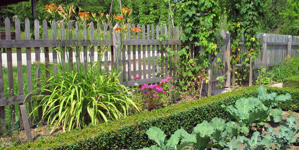 20 Best Garden Fence Ideas Different Types Of Garden Fences