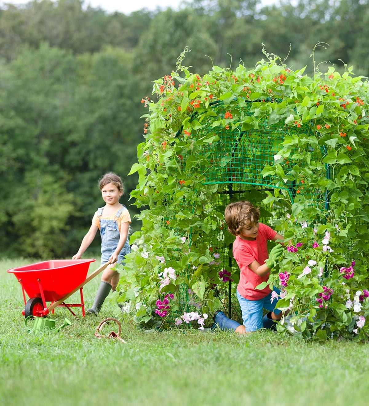 Gardening And Farm - cover