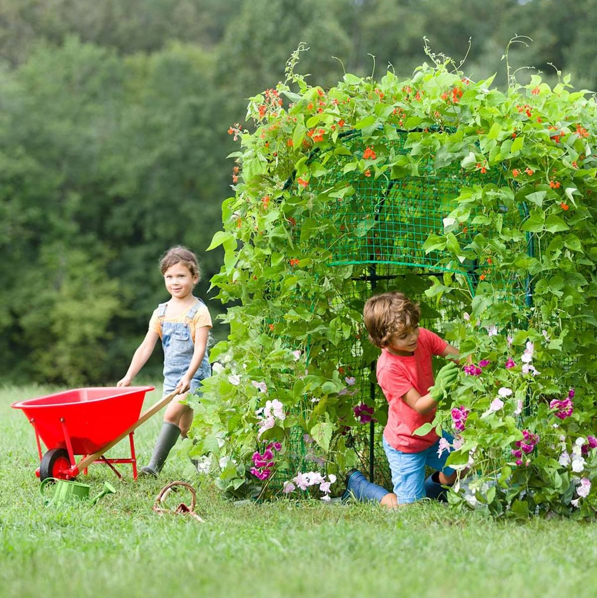Your Kids Can Now Grow Their Own Secret Garden Fort