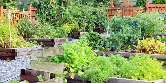 20 Free Garden Design Ideas And Plans - Best Garden Layouts