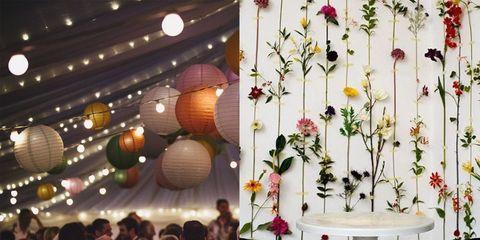 Lighting, Flower, Floral design, Plant, Ceiling, Lantern, Flower Arranging, Floristry, Branch, Tree,