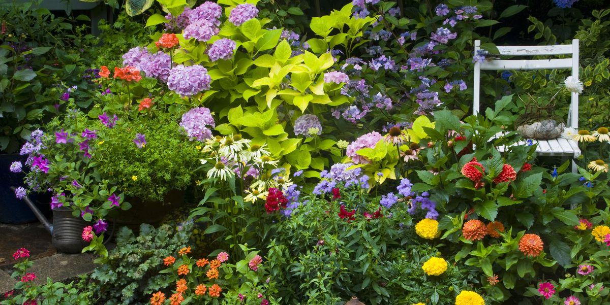 200 Flower Garden Layouts Ideas In 2021 Flower Garden Garden