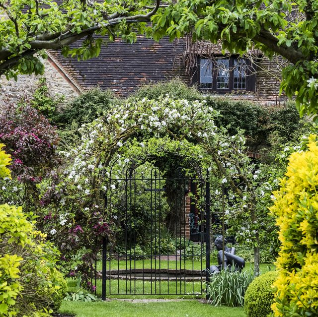 garden with shrubs and arbor with flowering plants in spring, cottage in the background