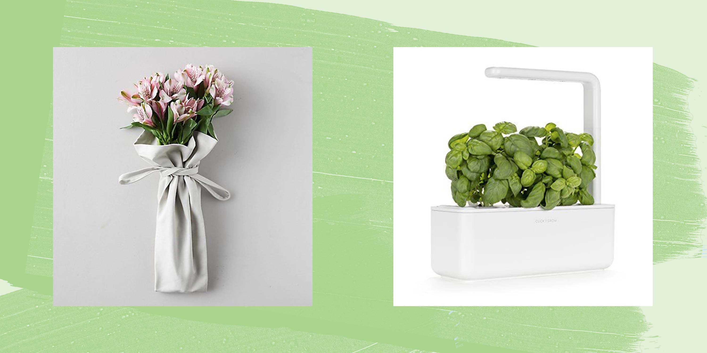 10 Best Gardening Gifts - Christmas Gift Ideas for Gardeners