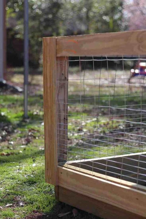 chicken wire garden best fence ideas