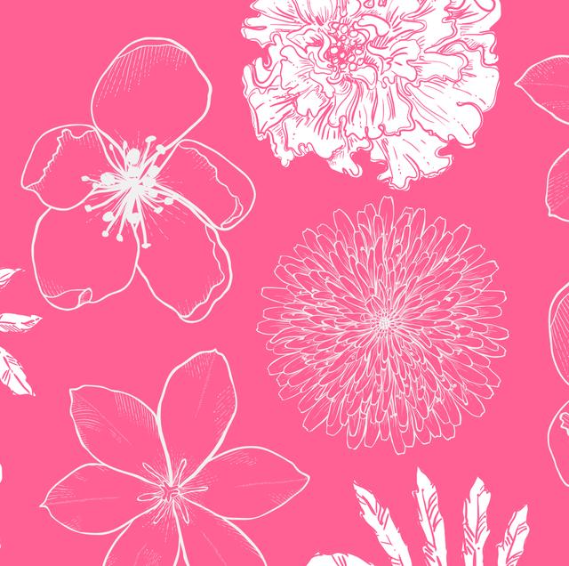 easiest flowers to grow in your garden