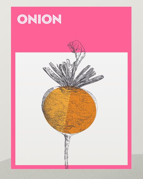 how to grow onion