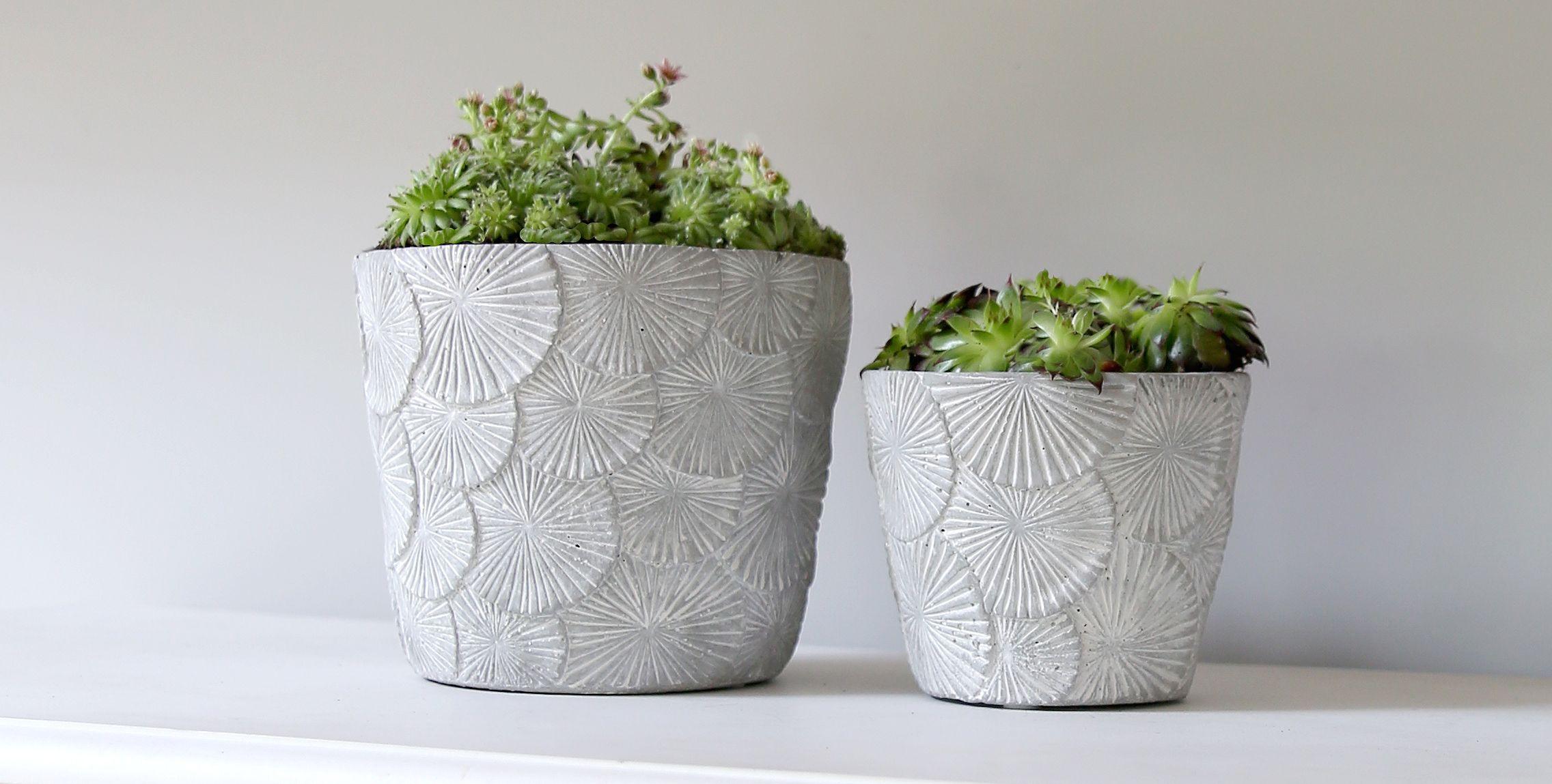 20 best gardening gifts under £35