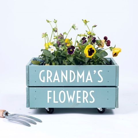 Gardening gift ideas for gardeners under £35