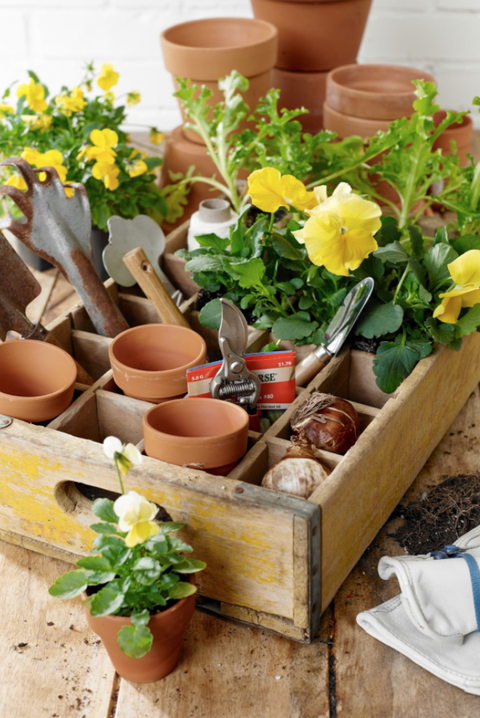 a potting station setup with pots and yellow flowers nestled in a vintage soda crate