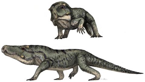 Vertebrate, Terrestrial animal, Animal figure, Dinosaur, Tyrannosaurus, Reptile, Lizard, Organism, Extinction, Claw,