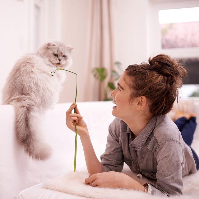 mujer jugando con gato