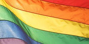 Gay Pride Rainbow Flag Shining in Bright Sunlight
