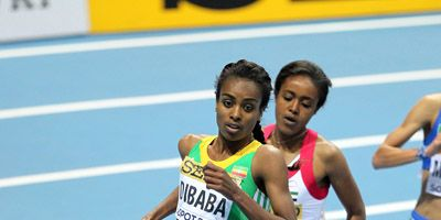 Genzebe Dibaba at 2014 World Indoors