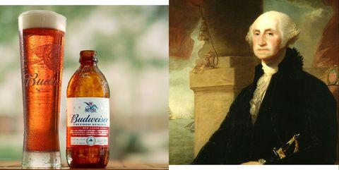 Product, Drink, Bottle, Alcohol, Beer, Glass bottle, Liqueur,