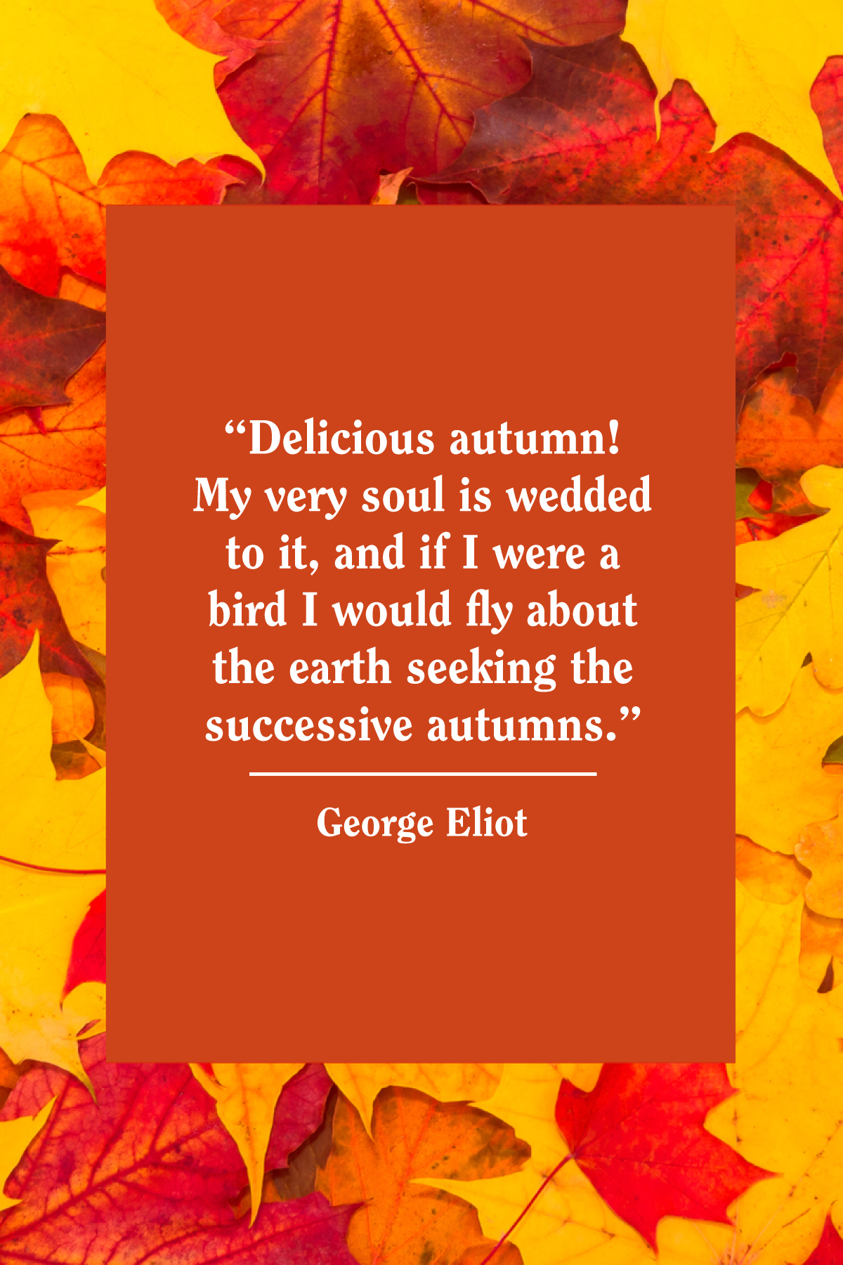 Image result for quotes about autumn