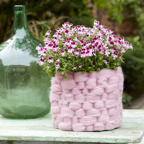 Geraniums flower pot withpink wool cover, DIY project