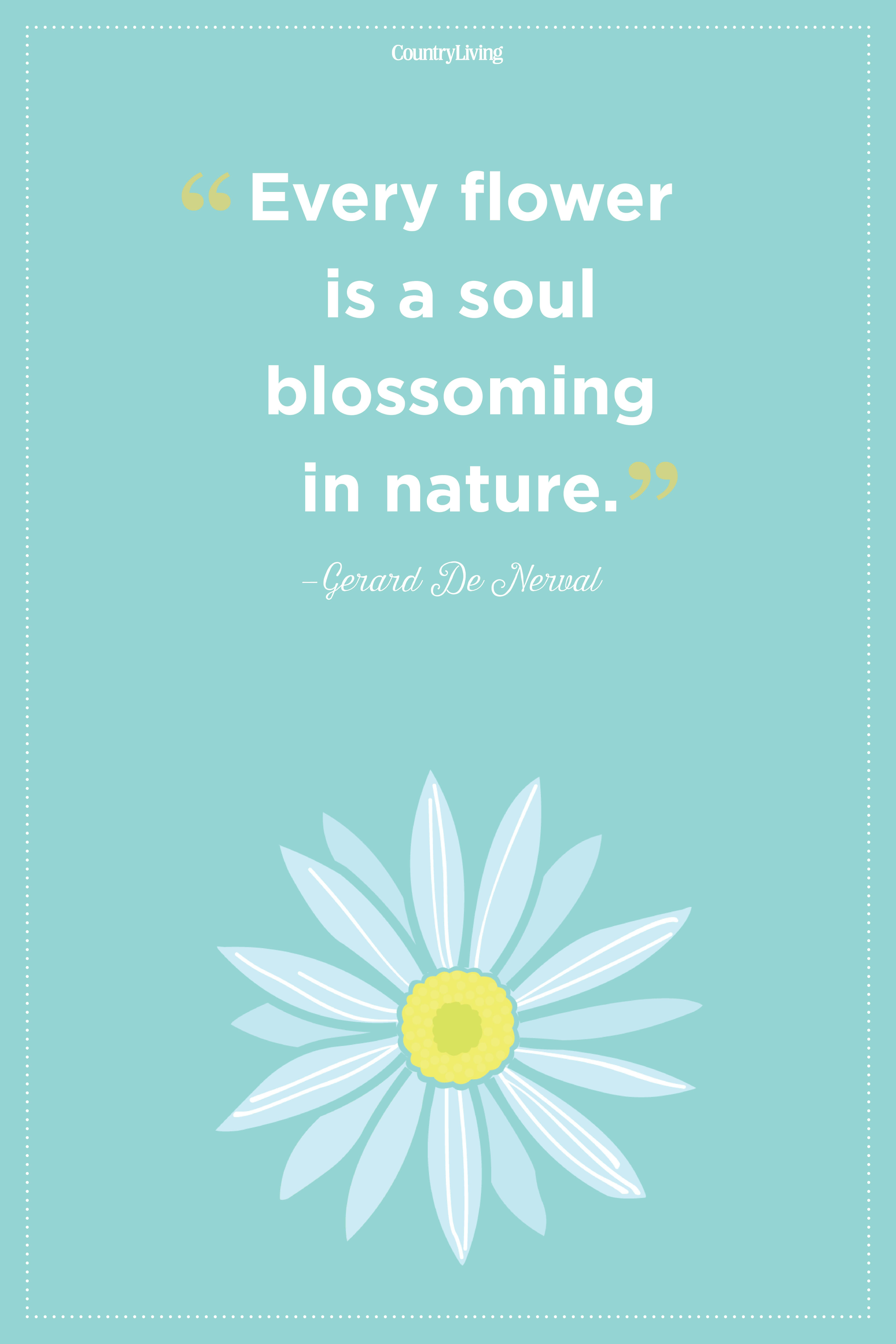 20 Inspirational Flower Quotes Cute Flower Sayings About Life And Love