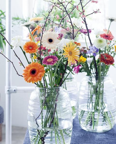 Flower, Flower Arranging, Floristry, Cut flowers, Plant, Floral design, barberton daisy, Gerbera, Bouquet, Flowerpot,