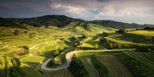 Duitsland-wijn-fietsen-klim-beklimming