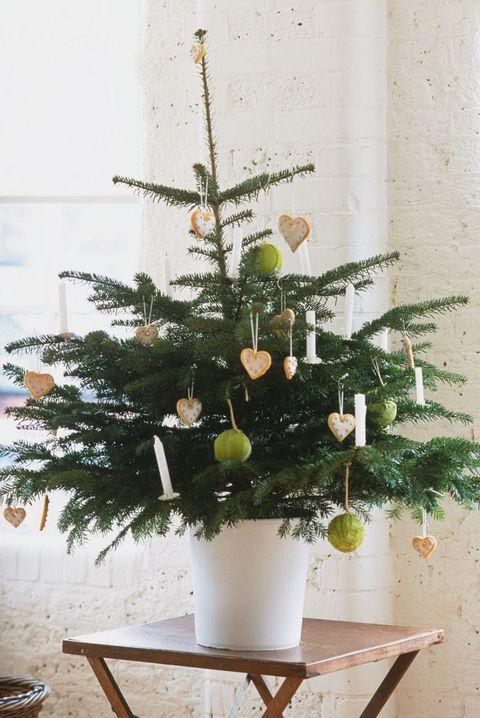 36 Best Christmas Living Room Decor Ideas Holiday Decorating